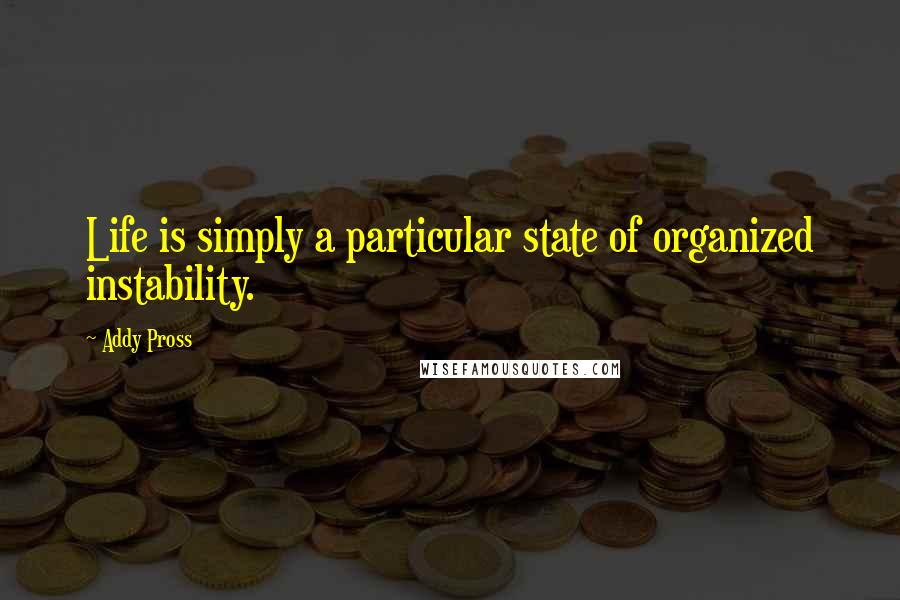 Addy Pross Quotes: Life is simply a particular state of organized instability.