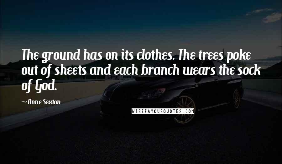 Anne Sexton Quotes: The ground has on its clothes. The trees poke out of sheets and each branch wears the sock of God.