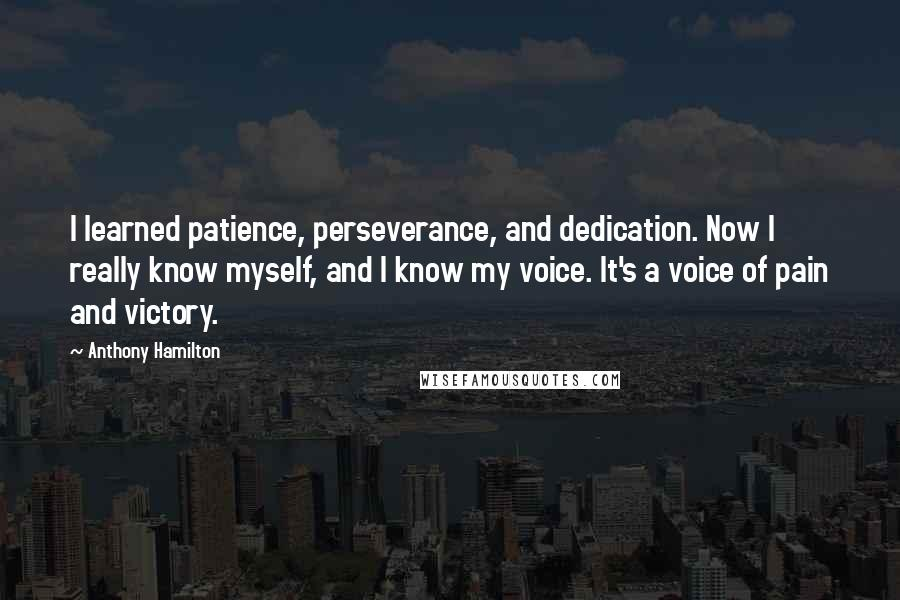 Anthony Hamilton Quotes I Learned Patience Perseverance And