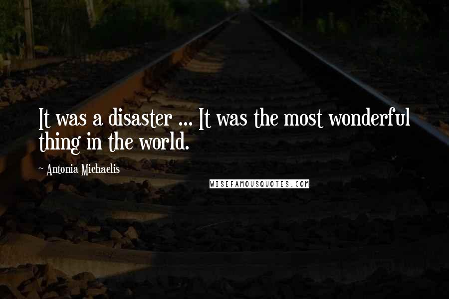 Antonia Michaelis Quotes: It was a disaster ... It was the most wonderful thing in the world.