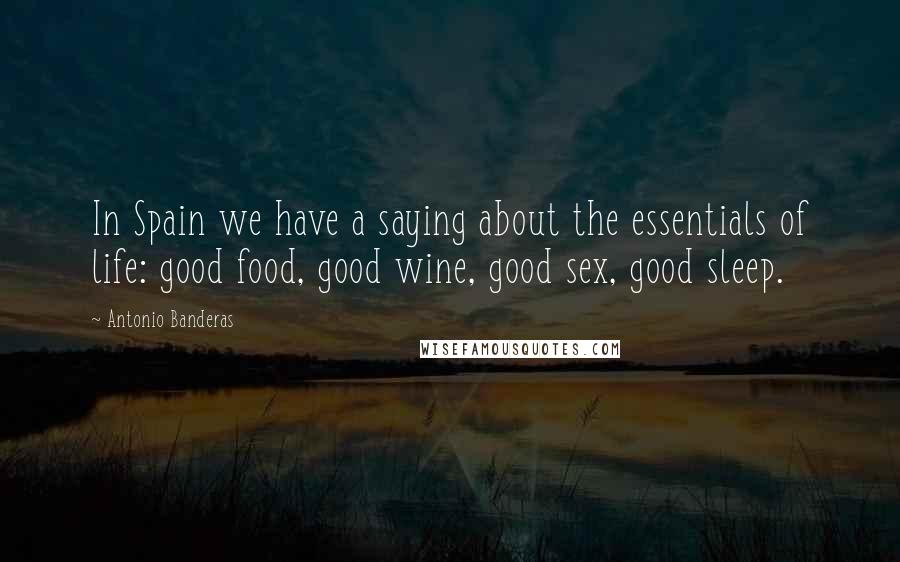 Antonio Banderas Quotes: In Spain we have a saying about the essentials of life: good food, good wine, good sex, good sleep.