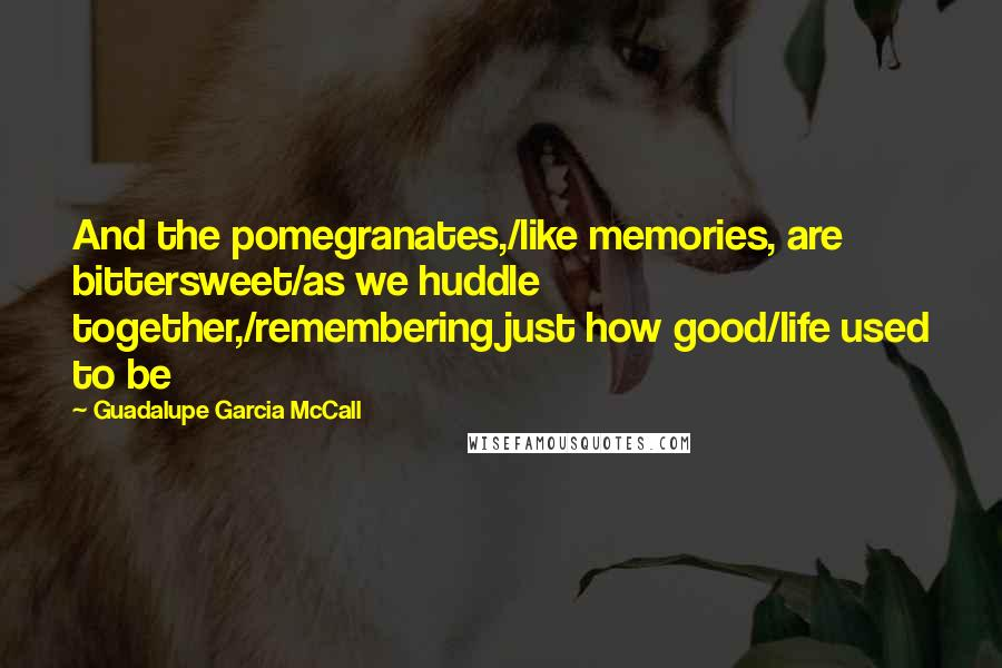 guadalupe garcia mccall quotes and the pomegranates like