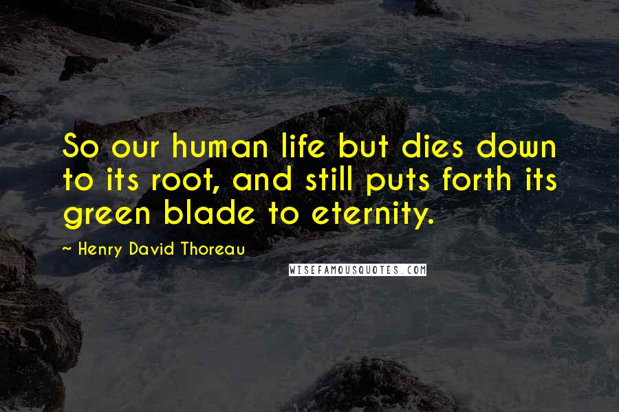 Henry David Thoreau Quotes: So our human life but dies down to its root, and still puts forth its green blade to eternity.