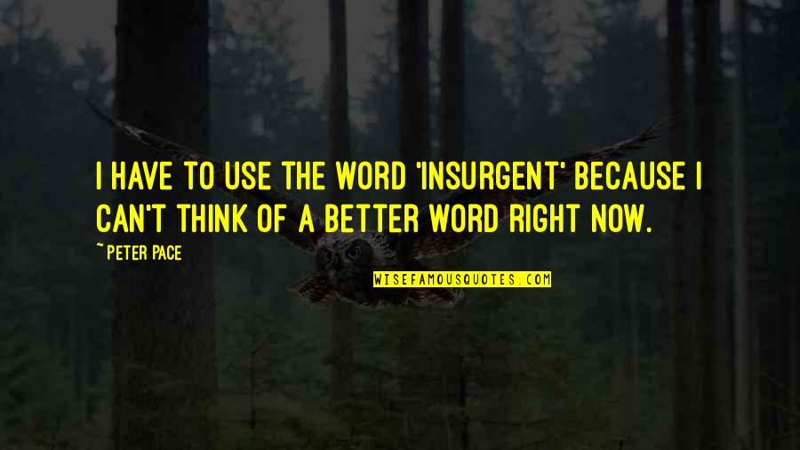 1-2 Word Quotes By Peter Pace: I have to use the word 'insurgent' because