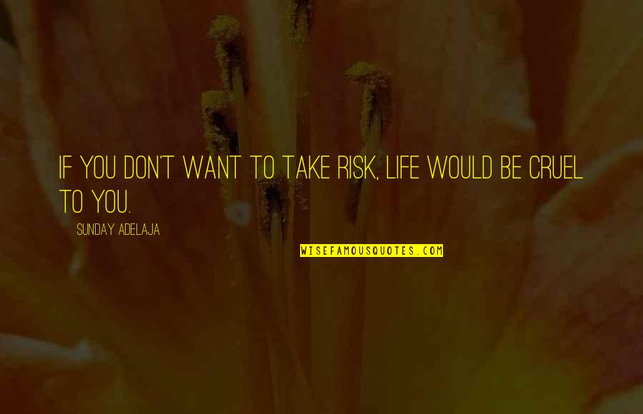 1 Litre Of Tears Quotes By Sunday Adelaja: If you don't want to take risk, life