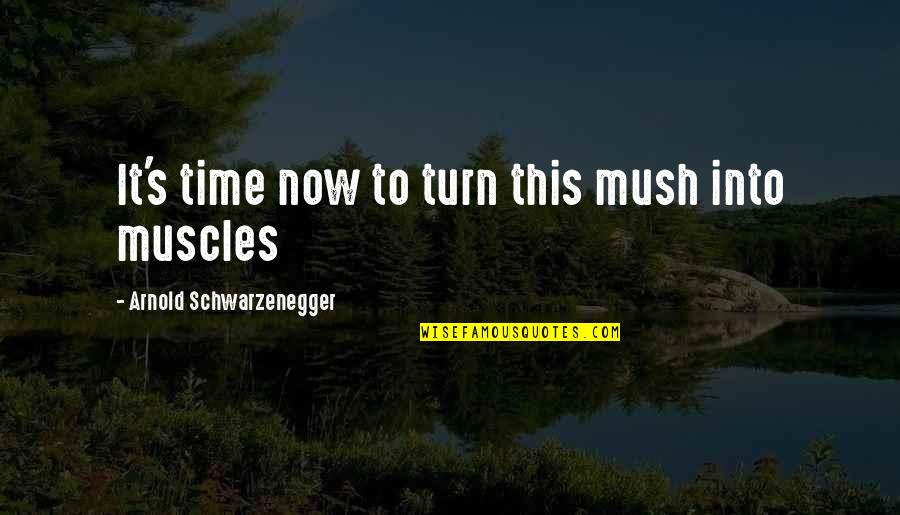123greetings Love Quotes By Arnold Schwarzenegger: It's time now to turn this mush into