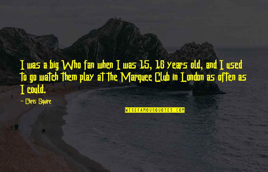16 Years Old Quotes By Chris Squire: I was a big Who fan when I