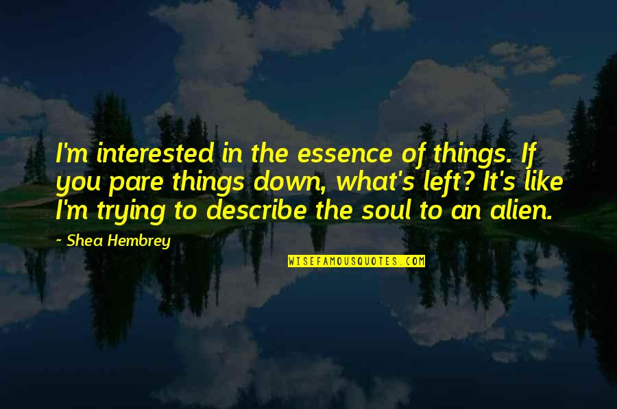 19th Death Anniversary Quotes By Shea Hembrey: I'm interested in the essence of things. If