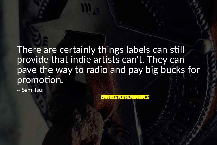 2 Way Radio Quotes By Sam Tsui: There are certainly things labels can still provide