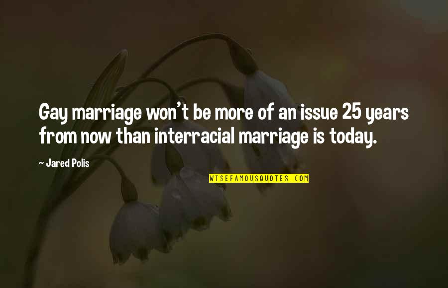 25 Years Of Marriage Quotes By Jared Polis: Gay marriage won't be more of an issue