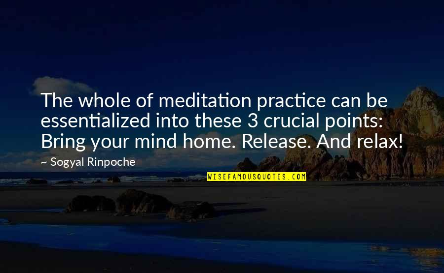 3 Points Quotes By Sogyal Rinpoche: The whole of meditation practice can be essentialized