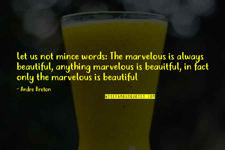3 Words Beautiful Quotes By Andre Breton: Let us not mince words: The marvelous is