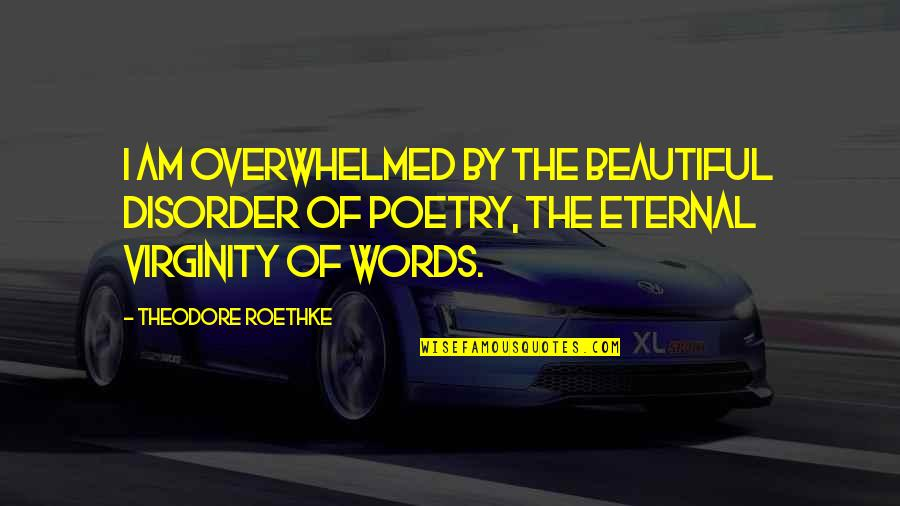 3 Words Beautiful Quotes By Theodore Roethke: I am overwhelmed by the beautiful disorder of