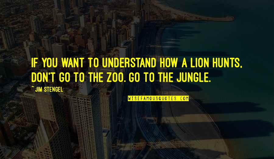 4 P's Of Marketing Quotes By Jim Stengel: If you want to understand how a lion