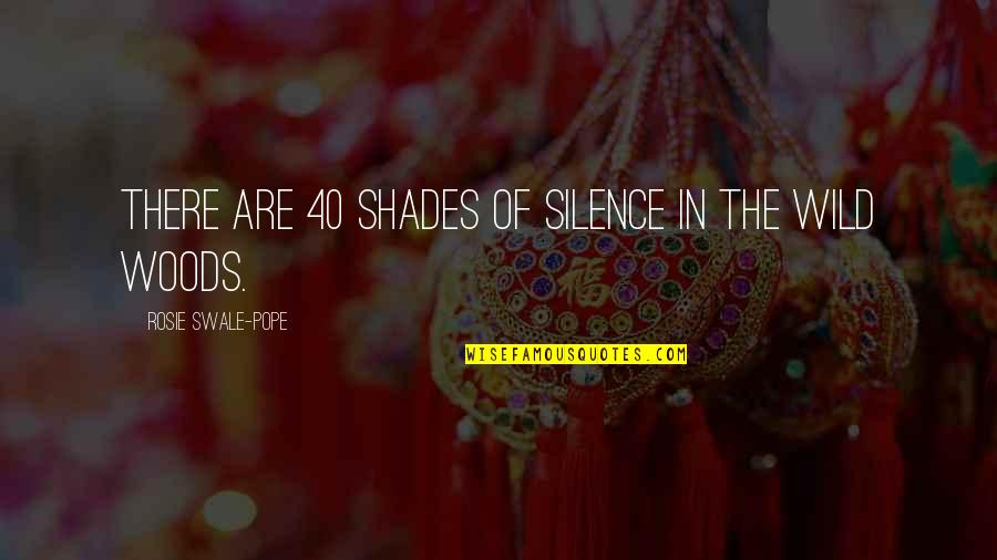 40 Plus Quotes By Rosie Swale-Pope: There are 40 shades of silence in the