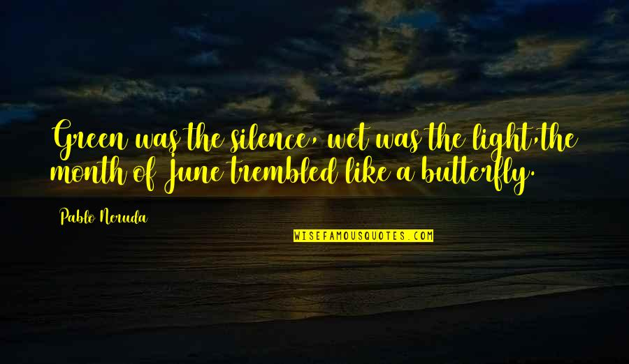 6 Month Love Quotes By Pablo Neruda: Green was the silence, wet was the light,the