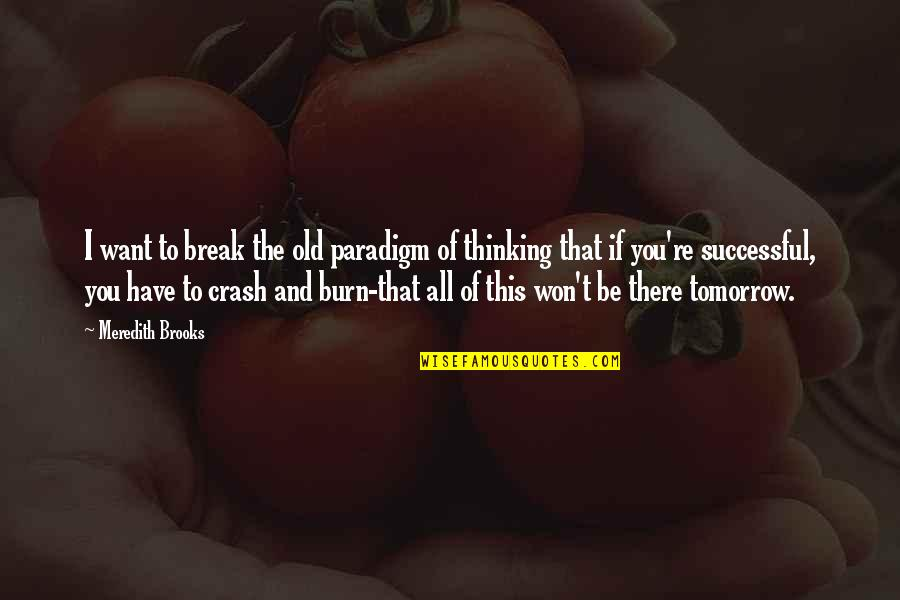 6th Grade Quotes By Meredith Brooks: I want to break the old paradigm of