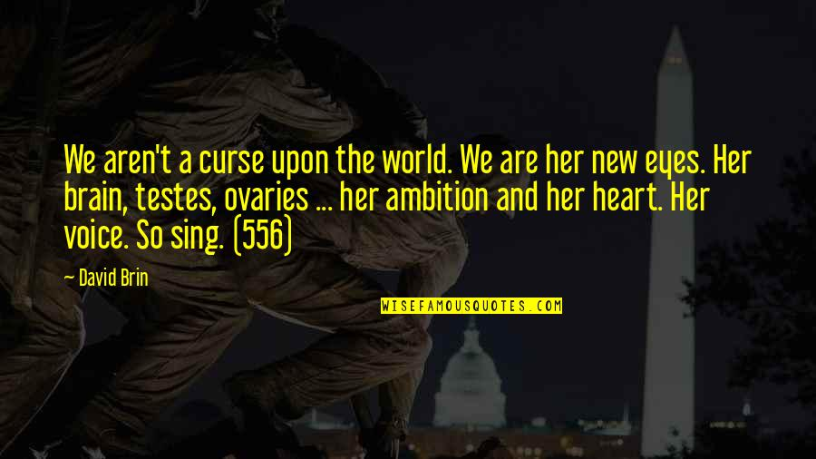 A Ambition Quotes By David Brin: We aren't a curse upon the world. We