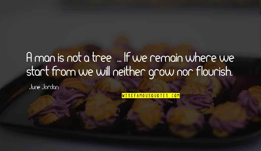 A Ambition Quotes By June Jordan: A man is not a tree' ... If
