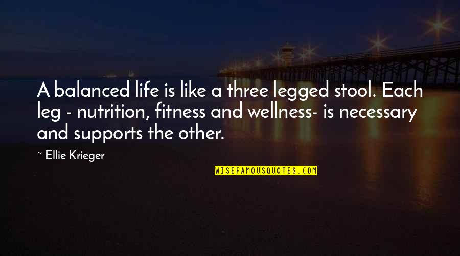A Balanced Life Quotes By Ellie Krieger: A balanced life is like a three legged