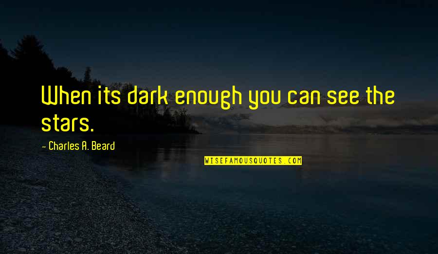 A Beard Quotes By Charles A. Beard: When its dark enough you can see the
