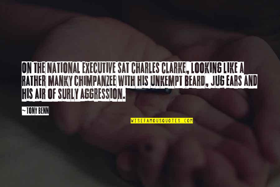 A Beard Quotes By Tony Benn: On the National Executive sat Charles Clarke, looking