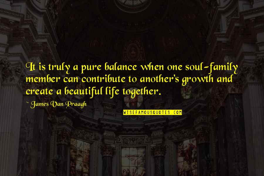 A Beautiful Soul Quotes By James Van Praagh: It is truly a pure balance when one