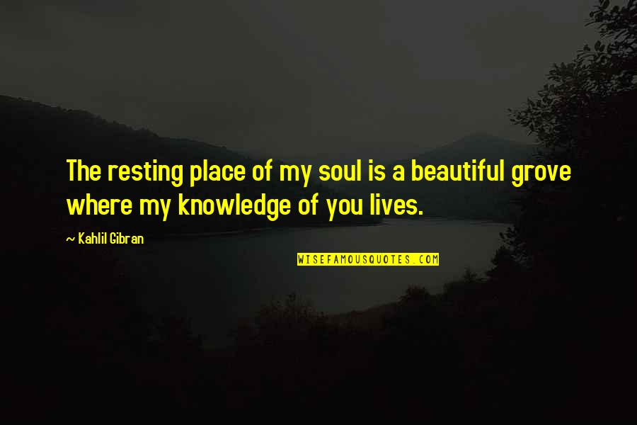 A Beautiful Soul Quotes By Kahlil Gibran: The resting place of my soul is a