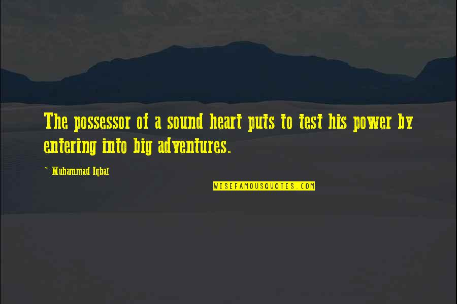 A Big Heart Quotes By Muhammad Iqbal: The possessor of a sound heart puts to