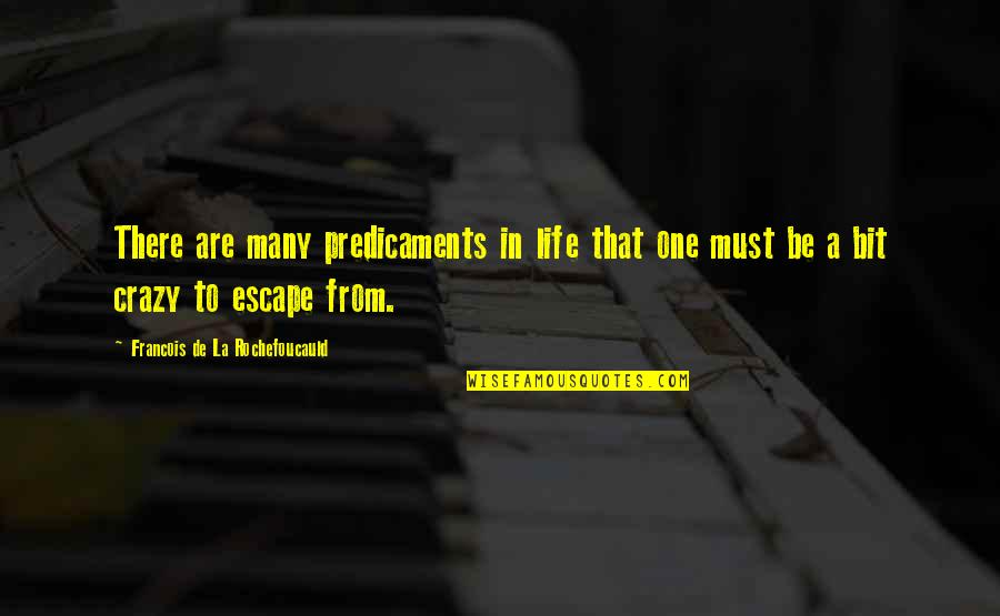 A Bit Crazy Quotes By Francois De La Rochefoucauld: There are many predicaments in life that one