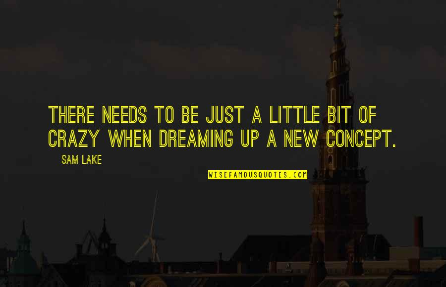 A Bit Crazy Quotes By Sam Lake: There needs to be just a little bit