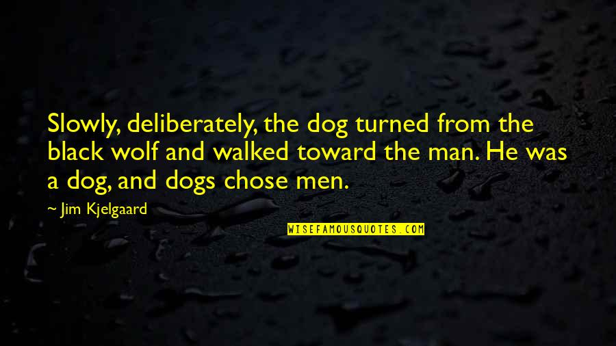 A Black Man Quotes By Jim Kjelgaard: Slowly, deliberately, the dog turned from the black