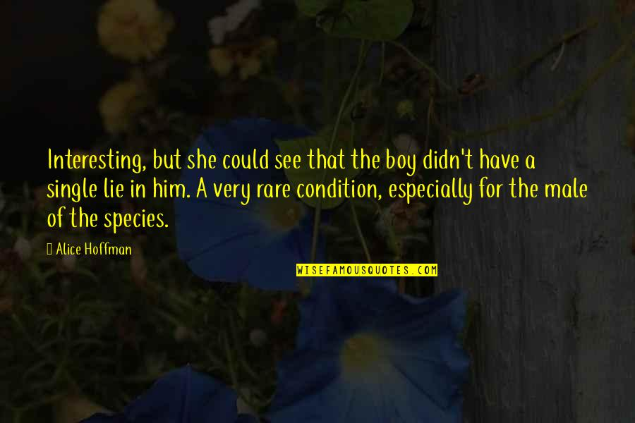 A Boy Lying To You Quotes By Alice Hoffman: Interesting, but she could see that the boy