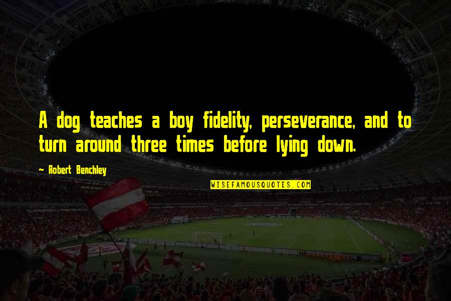 A Boy Lying To You Quotes By Robert Benchley: A dog teaches a boy fidelity, perseverance, and