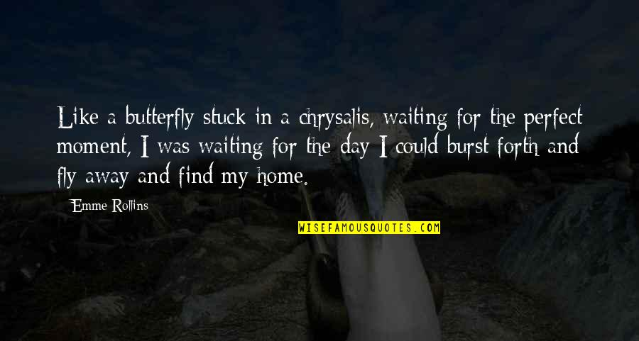 A Butterfly Quotes By Emme Rollins: Like a butterfly stuck in a chrysalis, waiting