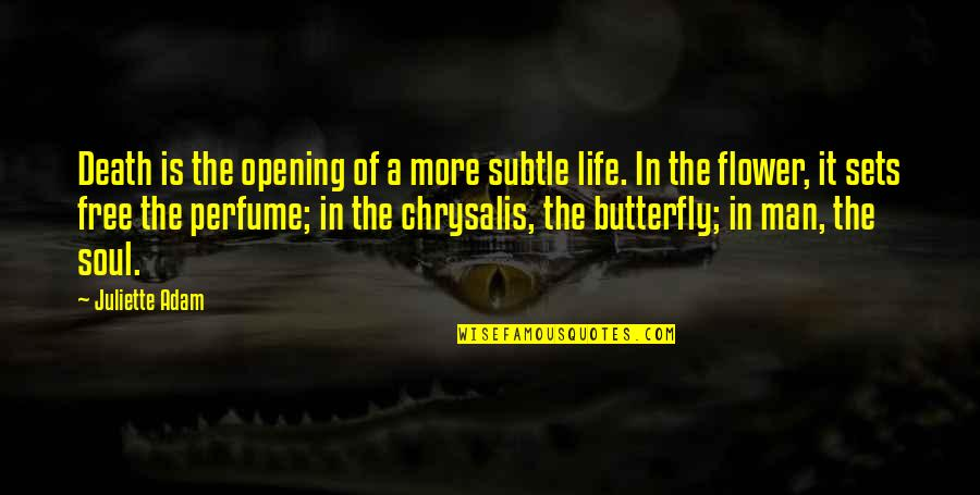 A Butterfly Quotes By Juliette Adam: Death is the opening of a more subtle