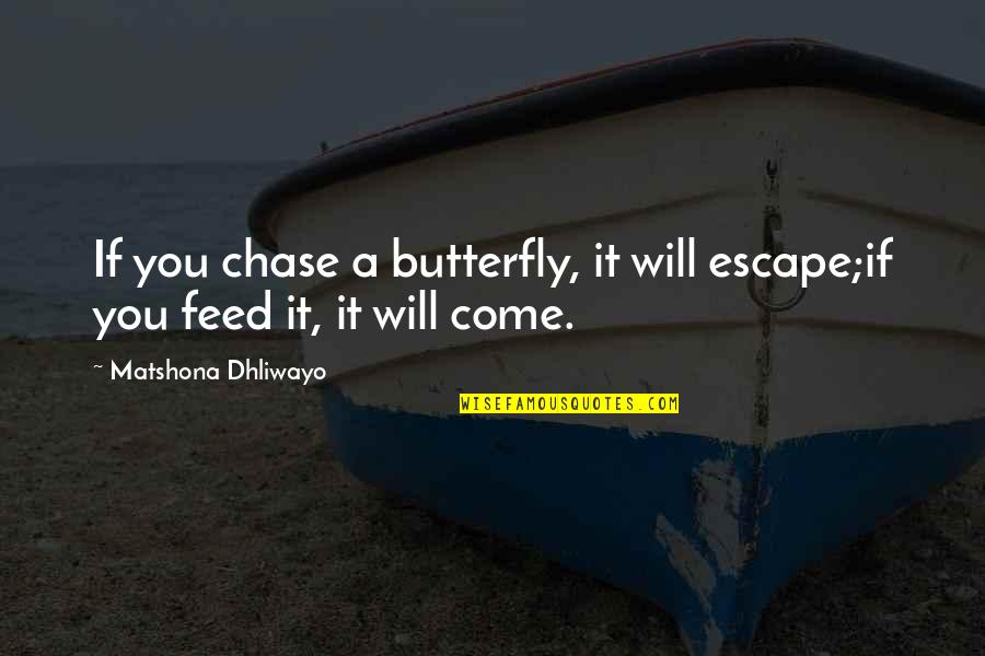 A Butterfly Quotes By Matshona Dhliwayo: If you chase a butterfly, it will escape;if