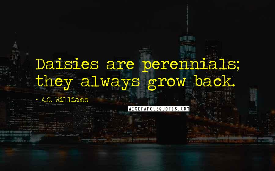 A.C. Williams quotes: Daisies are perennials; they always grow back.