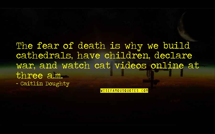 A Cat Dying Quotes By Caitlin Doughty: The fear of death is why we build