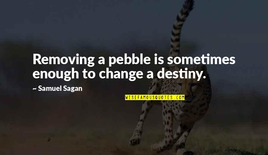 A Change Quotes By Samuel Sagan: Removing a pebble is sometimes enough to change