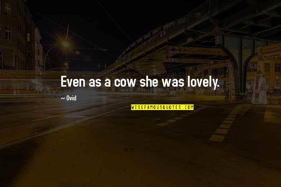 A Cow Quotes By Ovid: Even as a cow she was lovely.