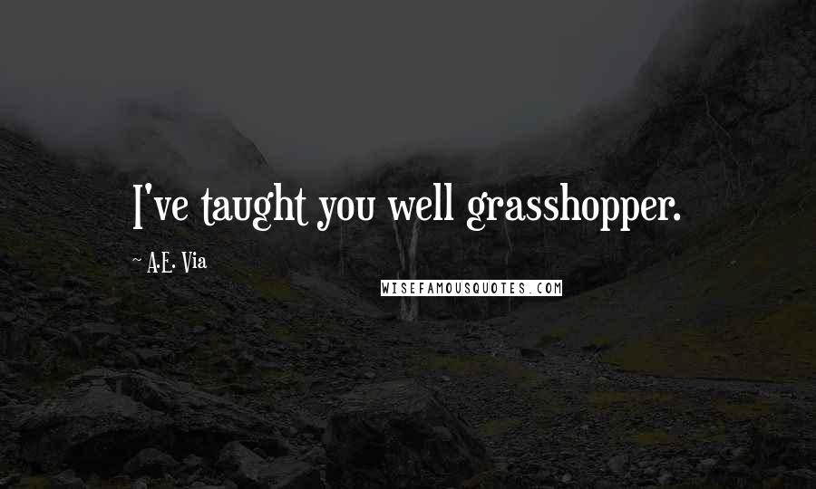A.E. Via quotes: I've taught you well grasshopper.