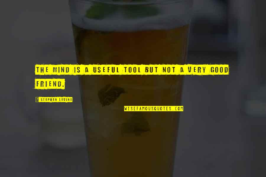 A Good Friend Dying Quotes By Stephen Levine: The mind is a useful tool but not