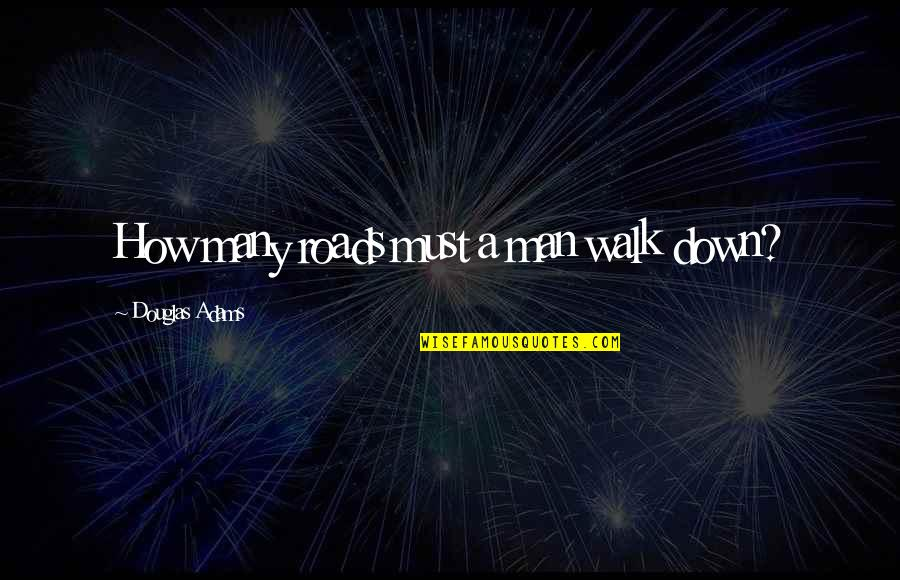 A Guide Quotes By Douglas Adams: How many roads must a man walk down?