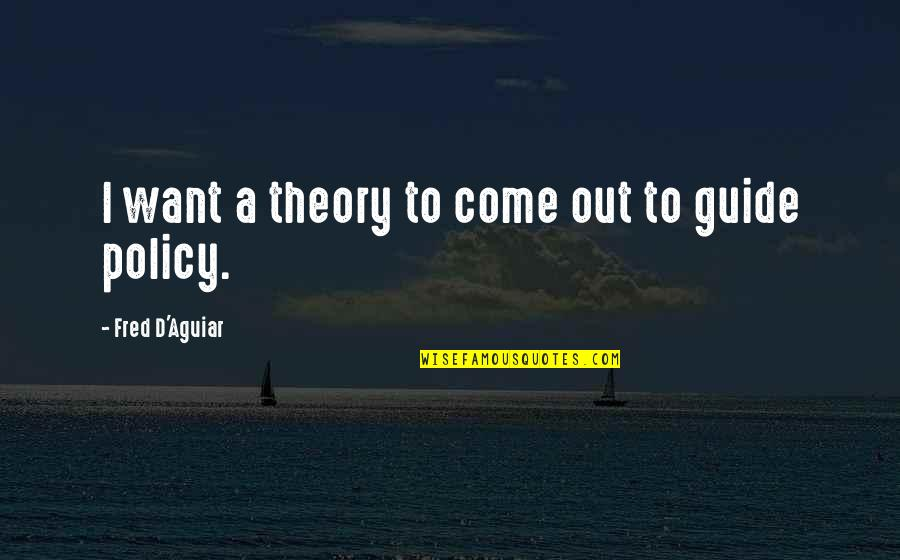 A Guide Quotes By Fred D'Aguiar: I want a theory to come out to