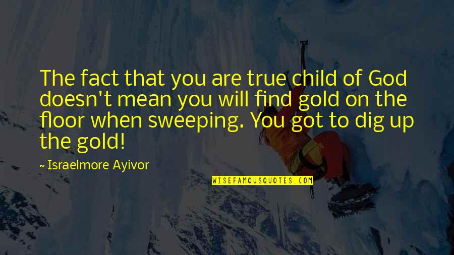 A Hard Worker Quotes By Israelmore Ayivor: The fact that you are true child of