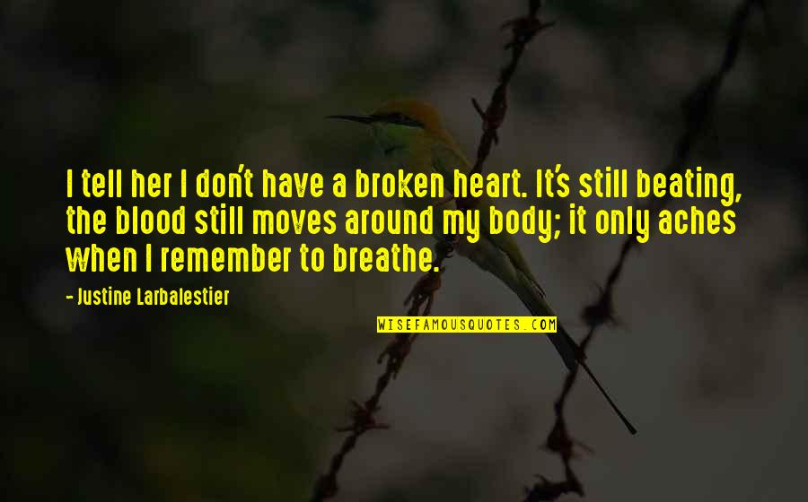A Heart Broken Quotes By Justine Larbalestier: I tell her I don't have a broken