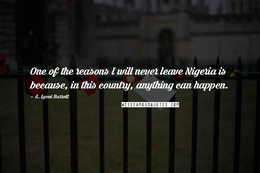 A. Igoni Barrett quotes: One of the reasons I will never leave Nigeria is because, in this country, anything can happen.