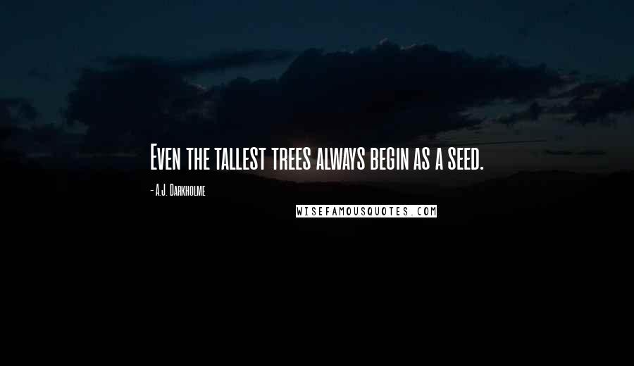A.J. Darkholme quotes: Even the tallest trees always begin as a seed.