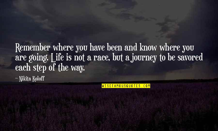 A Journey Of Life Quotes By Nikita Koloff: Remember where you have been and know where